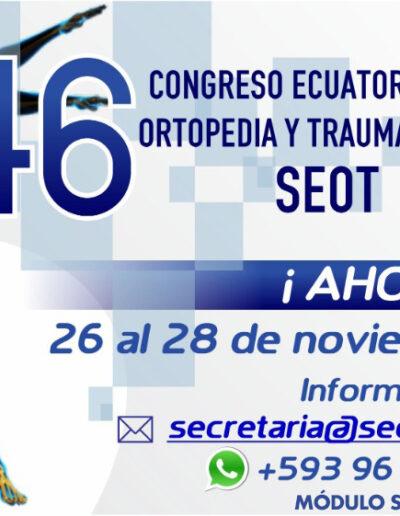 Afiche Congreso Nacional SEOT 2020